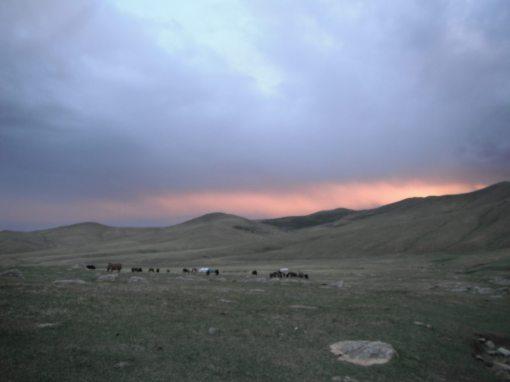 Mongolia part 1.1